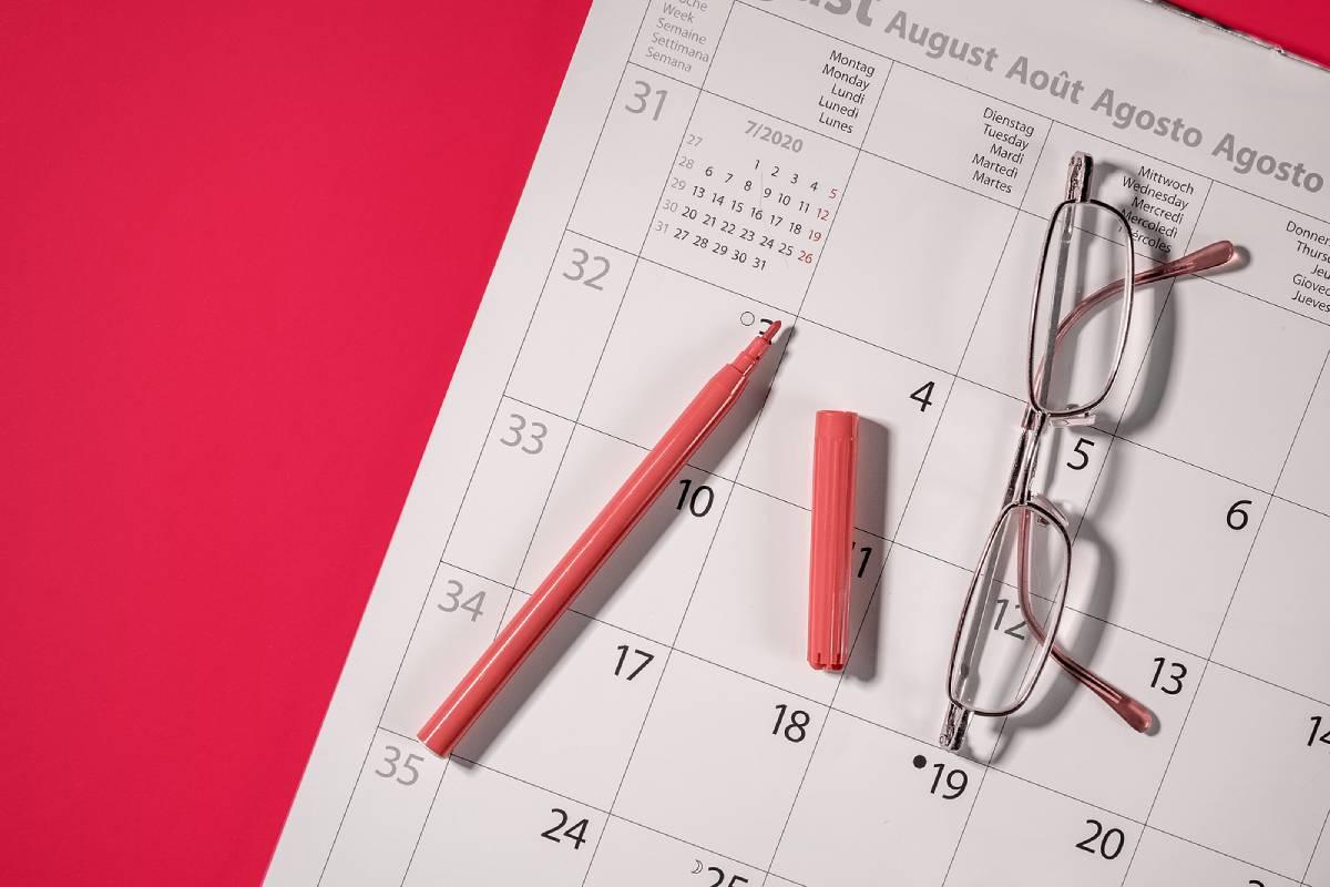aprobación cuentas anuales ejercicio 2019